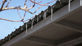 Lot of Melting icicles on a roof stock video footage