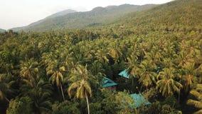 Lot nad d?ungl? wyspa Koh Phangan zdjęcie wideo