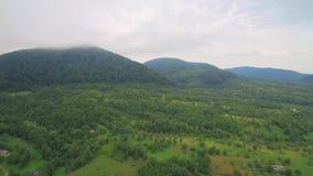 Lot nad góry zakrywa z mgłą Czarodziejskiej zieleni ogródy i drzewa zbiory