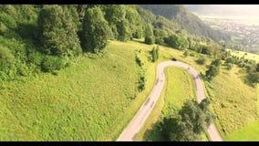 Lot nad lasem w Alps zbiory wideo
