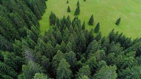 Lot nad lasem w górach zbiory
