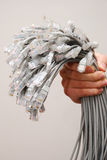 A lot of network cables. Held in hand Stock Image
