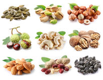 A lot nuts Royalty Free Stock Images