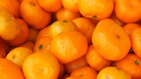 Lot of orange mandarin as a background. A lot of orange mandarin as a background stock video footage