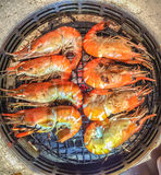 A lot of Orange Shrimp has burn. A lot of Orange Shrimp has burn at lunch Royalty Free Stock Photos