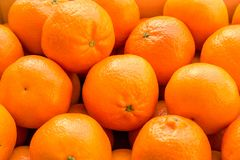 A lot of oranges and tangerines in a nest. stock photography