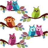 Lot of owls sitting in a tree Stock Photo