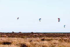 Lot of parachutes for Kitebording Stock Images
