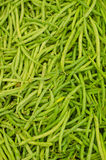 Lot of pea pods Royalty Free Stock Images