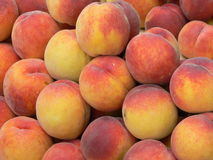 A lot of peaches Royalty Free Stock Images