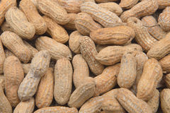 A lot of peanut in the shell for background. Raw peanuts at a fa. Rmer`s market Royalty Free Stock Images