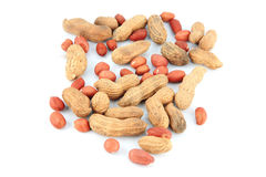 Peanuts Mingle on white background. Stock Photos