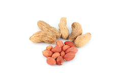 Peanuts on white background. Stock Image