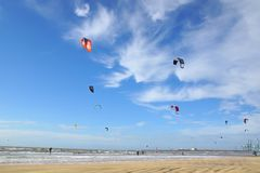 A lot of people kiteboarding on the beach. Stock Images