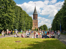 A lot of people walking in a city park on summer day Royalty Free Stock Images