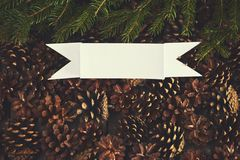 A lot of pine cones with christmas tree. Desigh mockup. A lot of pine cones with christmas tree Royalty Free Stock Photos