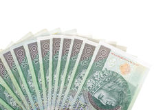 Lot of polish money Stock Images
