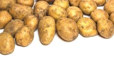 A lot of dirty potatoes on a white background. Potatoes scattere. A lot of potatoes lie on a white background Royalty Free Stock Photos