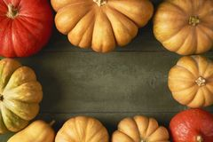 A lot of pumpkin on wooden background. Top view. Copy space for stock photos