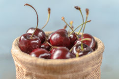 A lot of Purple Cherry. A lot of Purple Cherry in the wicker brown bowl with blue isolated background Stock Images
