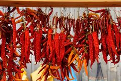 A lot of red dry peppers hang in bunches on the wall stock photo