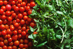 A lot of red fresh cherry tomatoes and arugula leaves close up. Royalty Free Stock Photo