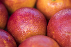 Lot of red Mandarin are sold on the market Stock Images