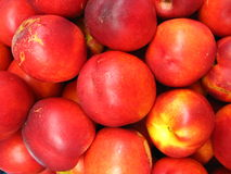 A lot of red nectarines Royalty Free Stock Photos