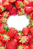 Lot of red strawberries Royalty Free Stock Photography