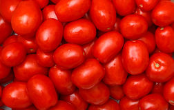 Lot of Red Tomatoes background Royalty Free Stock Photos