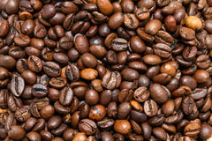 A lot of roasted coffee beans. Background: a lot of roasted coffee beans Stock Images