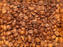 Lot of roasted coffee beans royalty free stock image
