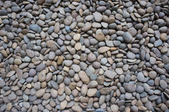 A lot of rock. In Mahidol University ,Thailand Royalty Free Stock Photo