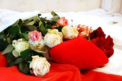 A lot of roses, scarlet, white and rose Stock Photo
