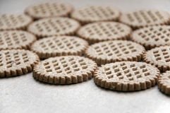 A lot round bran cookies laid out on a cardboard surface in perspective. Stock Photography