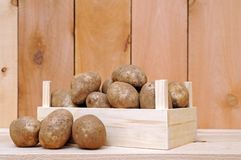 Russet potatoes Royalty Free Stock Photography