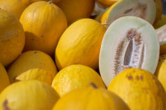 Lot's of Melons. Canary melons for sale at the market royalty free stock photos