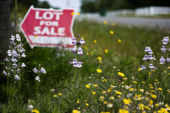Lot For Sale with Texas Wildflowers. Wildflowers decorate the Lot for Sale sign on a country road just outside of Austin, Texas Stock Photography