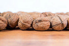 A lot of scattered walnuts close-up. A useful product. Royalty Free Stock Images