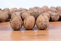 A lot of scattered walnuts close-up. A useful product. Stock Images
