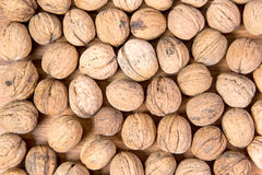 A lot of scattered walnuts close-up. A useful product. Royalty Free Stock Image