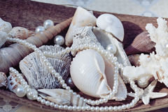 A lot of sea shells and perls in art mess. Close up Stock Images