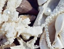 A lot of sea shells and perls in art mess. Close up Stock Photo