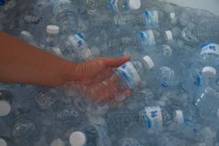 A lot of Singh drinking water in the ice cooler stock photography