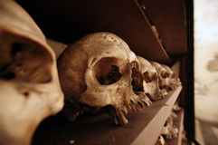 Lot of skulls in a crypt Royalty Free Stock Photos