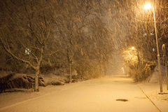A lot of snowfall and empty walkway Royalty Free Stock Photos