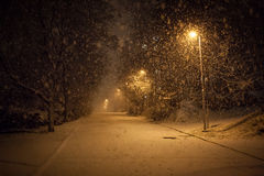 A lot of snowfall and empty walkway Stock Photo