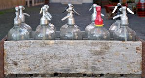 A lot of soda siphons Stock Images