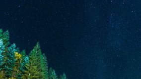 Lot of stars and some royalty free stock photo