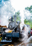 A lot Steam of Classic train Royalty Free Stock Images